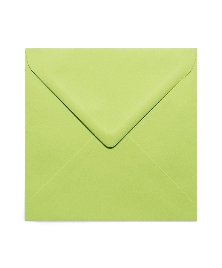 Plic patrat verde crud