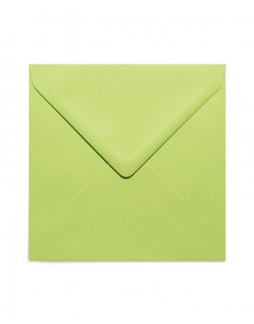 Plic 13x13 verde crud