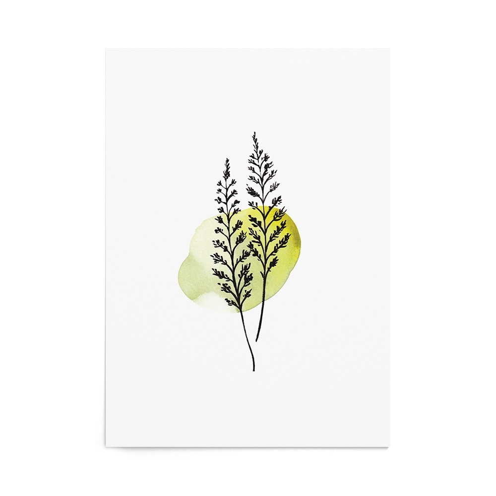 Art Print Green Fern