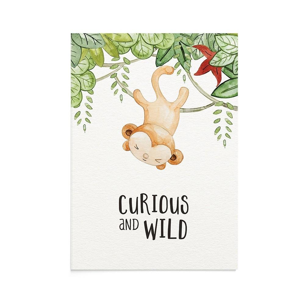 Felicitare Copii Wild Monkey