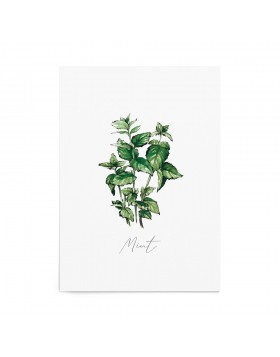 Art Print Mint