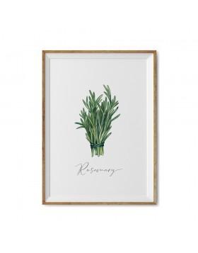 Art Print Rosemary