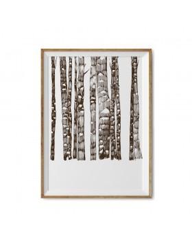 Poster Art Print Walnut Forest