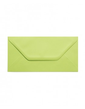 Plic DL verde crud