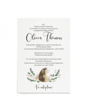 Invitatie de Botez Mr. Hedgehog