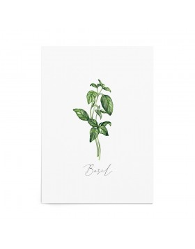 Art Print Basil