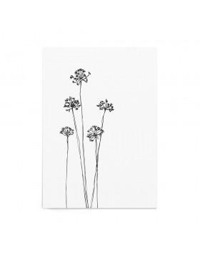 Art Print Dandelions