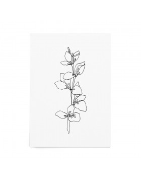 Art Print Delicate Leaf - White