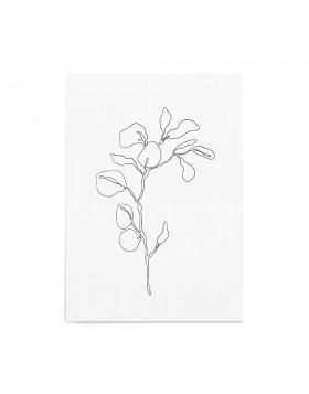 Art Print Eucalyptus Sprout - White