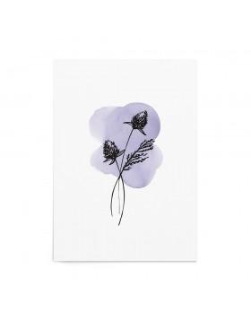 Art Print Violet Thistle